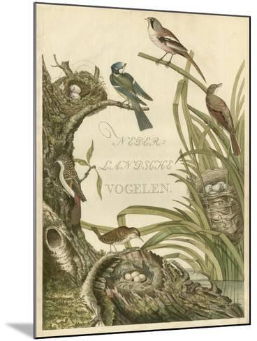 Sanctuary for Birds-Nozeman-Mounted Art Print