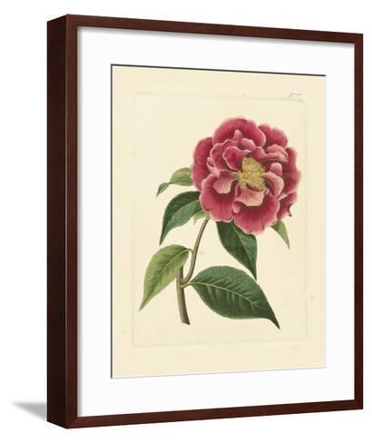 Eva's Garden III--Framed Art Print
