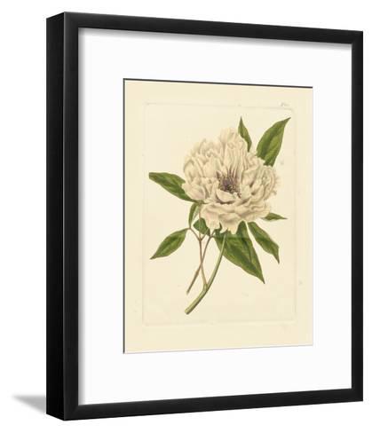 Eva's Garden V--Framed Art Print