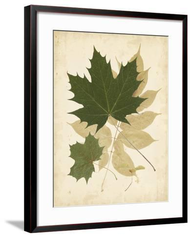 Nature's Collage I--Framed Art Print
