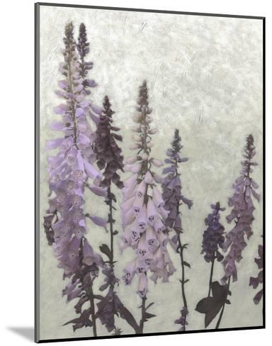 Non-Embellished Foxgloves II--Mounted Art Print