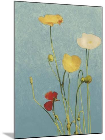 Non-Embellished Poppies I--Mounted Art Print