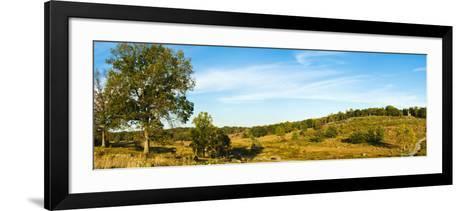 Trees on Hills, Little Round Top, Gettysburg, Adams County, Pennsylvania, USA--Framed Art Print
