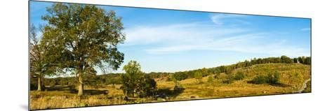 Trees on Hills, Little Round Top, Gettysburg, Adams County, Pennsylvania, USA--Mounted Photographic Print