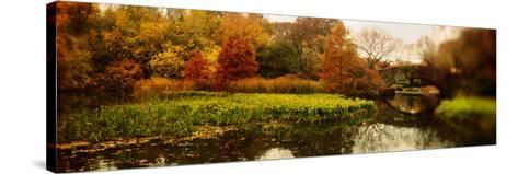 Pond in a Park, Central Park, Manhattan, New York City, New York State, USA--Stretched Canvas Print