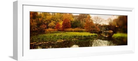 Pond in a Park, Central Park, Manhattan, New York City, New York State, USA--Framed Art Print