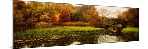 Pond in a Park, Central Park, Manhattan, New York City, New York State, USA--Mounted Photographic Print