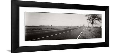 Tree at the Roadside, Maryland, USA--Framed Art Print