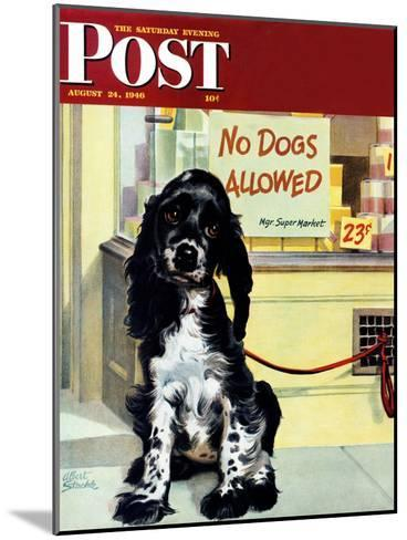 """No Dogs Allowed,"" Saturday Evening Post Cover, August 24, 1946-Albert Staehle-Mounted Giclee Print"