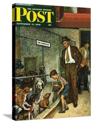 """Dog Pound,"" Saturday Evening Post Cover, September 17, 1949-Amos Sewell-Stretched Canvas Print"