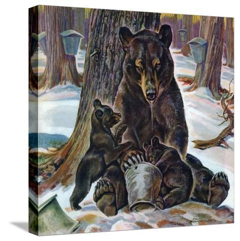 """""""Bears Eating Maple Syrup,"""" March 28, 1942-Paul Bransom-Stretched Canvas Print"""