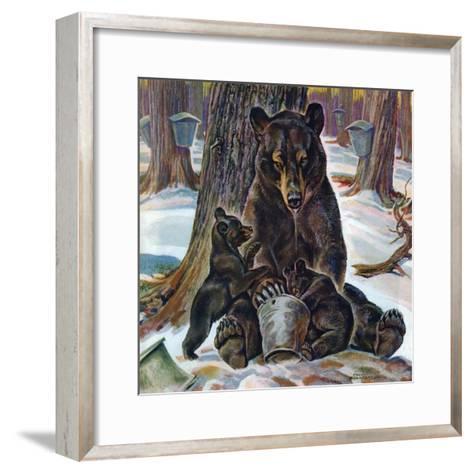 """Bears Eating Maple Syrup,"" March 28, 1942-Paul Bransom-Framed Art Print"