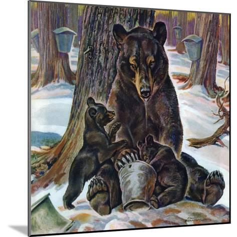 """""""Bears Eating Maple Syrup,"""" March 28, 1942-Paul Bransom-Mounted Giclee Print"""