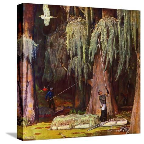 """""""Spanish Moss pickers,"""" April 5, 1947-Mead Schaeffer-Stretched Canvas Print"""