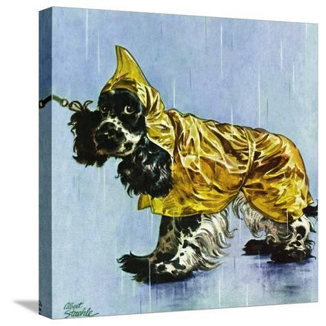 """""""Butch in Raingear,"""" April 2, 1949-Albert Staehle-Stretched Canvas Print"""