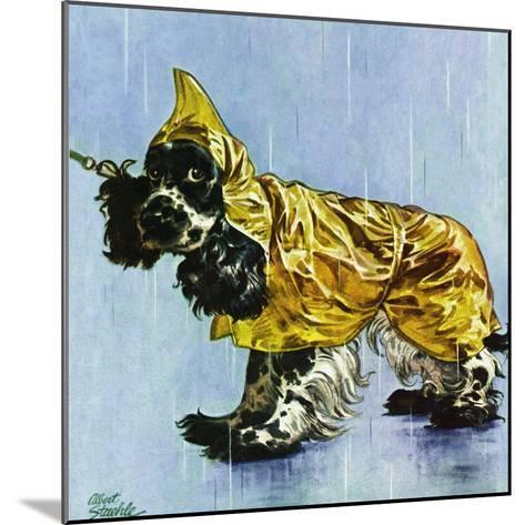 """Butch in Raingear,"" April 2, 1949-Albert Staehle-Mounted Giclee Print"