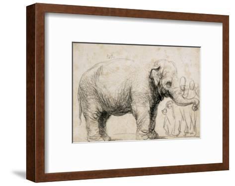 An Elephant Giclee Print by Rembrandt van Rijn   Art.com