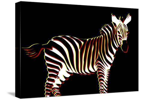 Zebra in Black Horizontal-Ikuko Kowada-Stretched Canvas Print