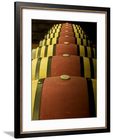 Wine Celler in Catalonia, Spain-Carlos Sanchez Pereyra-Framed Art Print