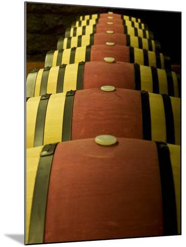Wine Celler in Catalonia, Spain-Carlos Sanchez Pereyra-Mounted Photographic Print