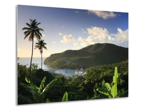 Caribbean, St Lucia, Marigot Bay and Harbour-Michele Falzone-Metal Print