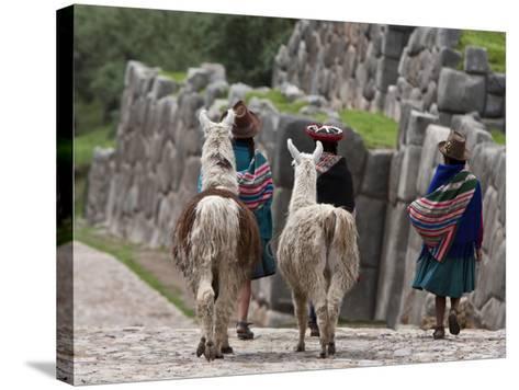 Peru, Native Indian Women Lead their Llamas Past the Ruins of Saqsaywaman-Nigel Pavitt-Stretched Canvas Print
