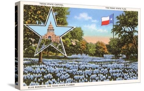 State Capitol, Austin, Texas, Blue Bonnets--Stretched Canvas Print