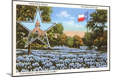 State Capitol, Austin, Texas, Blue Bonnets--Mounted Art Print
