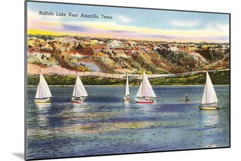 Buffalo Lake, Amarillo, Texas--Mounted Art Print
