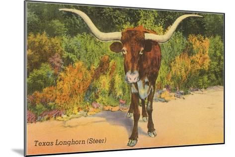 Texas Longhorn Steer--Mounted Art Print