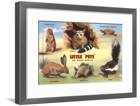 Creatures of the West Texas Desert--Framed Art Print
