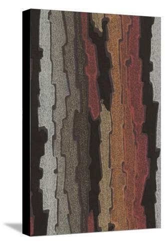 Bark Texture in Various Colors, Abstract Pattern--Stretched Canvas Print
