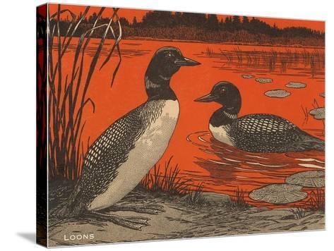 Woodcut of Loons--Stretched Canvas Print