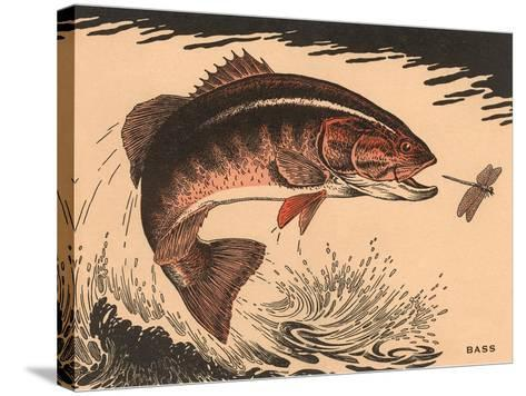 Woodcut of Bass--Stretched Canvas Print