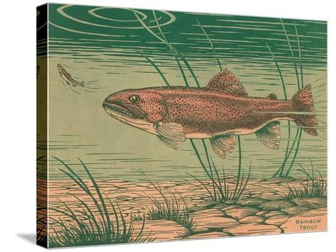 Woodcut of Rainbow Trout--Stretched Canvas Print