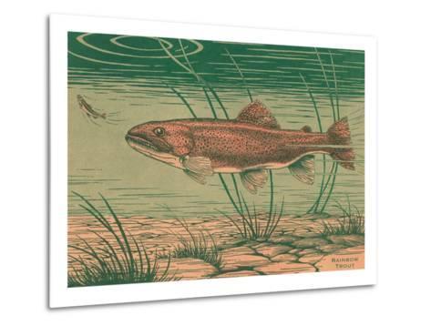 Woodcut of Rainbow Trout--Metal Print