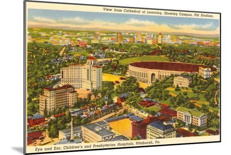 Pitt Stadium, Hospitals, Pittsburgh, Pennsylvania--Mounted Art Print