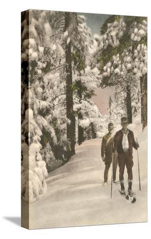 Cross-Country Skiers--Stretched Canvas Print