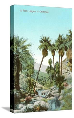 A Palm Canyon in California--Stretched Canvas Print