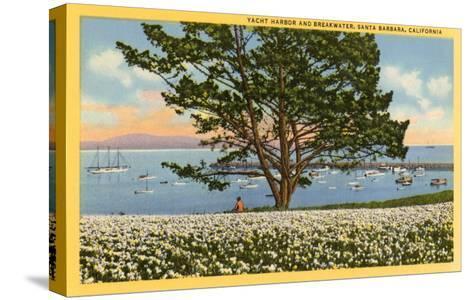 Yacht Harbor, Santa Barbara, California--Stretched Canvas Print
