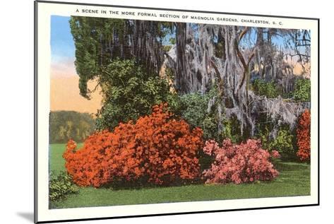 Magnolia Gardens, Charleston, South Carolina--Mounted Art Print