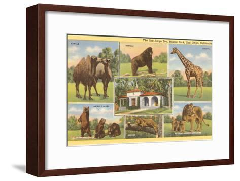 Scenes of Animals from Zoo, San Diego, California--Framed Art Print