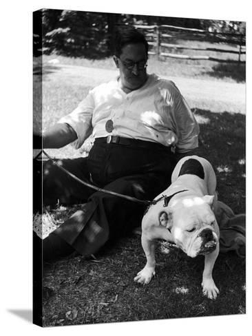 1938 Morris + Essex Dog Show. English Bulldog--Stretched Canvas Print
