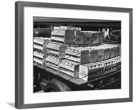 A Truckload of Freshly Harvested Canteloupes in Crates--Framed Art Print