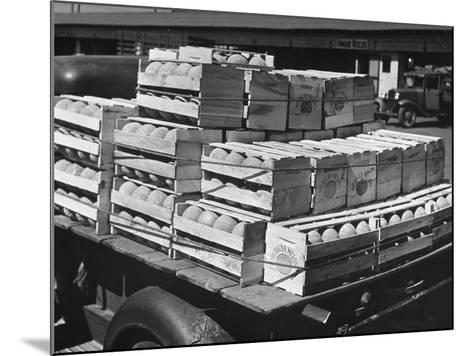 A Truckload of Freshly Harvested Canteloupes in Crates--Mounted Photographic Print