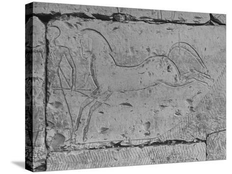 Carving of a Horse on Wall of Temple of Ramses II at Abydos--Stretched Canvas Print