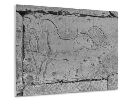 Carving of a Horse on Wall of Temple of Ramses II at Abydos--Metal Print