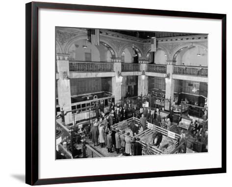 Nat'L Western, Denver Cattle Show--Framed Art Print
