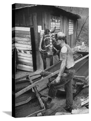 A Miner Standing with a Mule at the Rock House Coal Co. Mine--Stretched Canvas Print