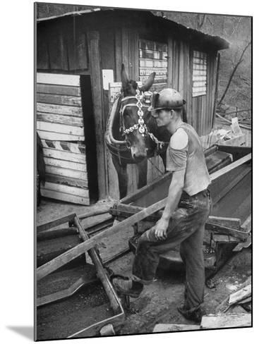 A Miner Standing with a Mule at the Rock House Coal Co. Mine--Mounted Photographic Print